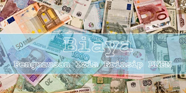 Biaya Pengurusan Izin Prinsip BKPM