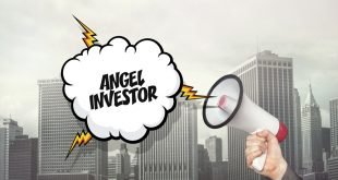 angel investor indonesia - How Angel Investor Indonesia Support Startup Businesse